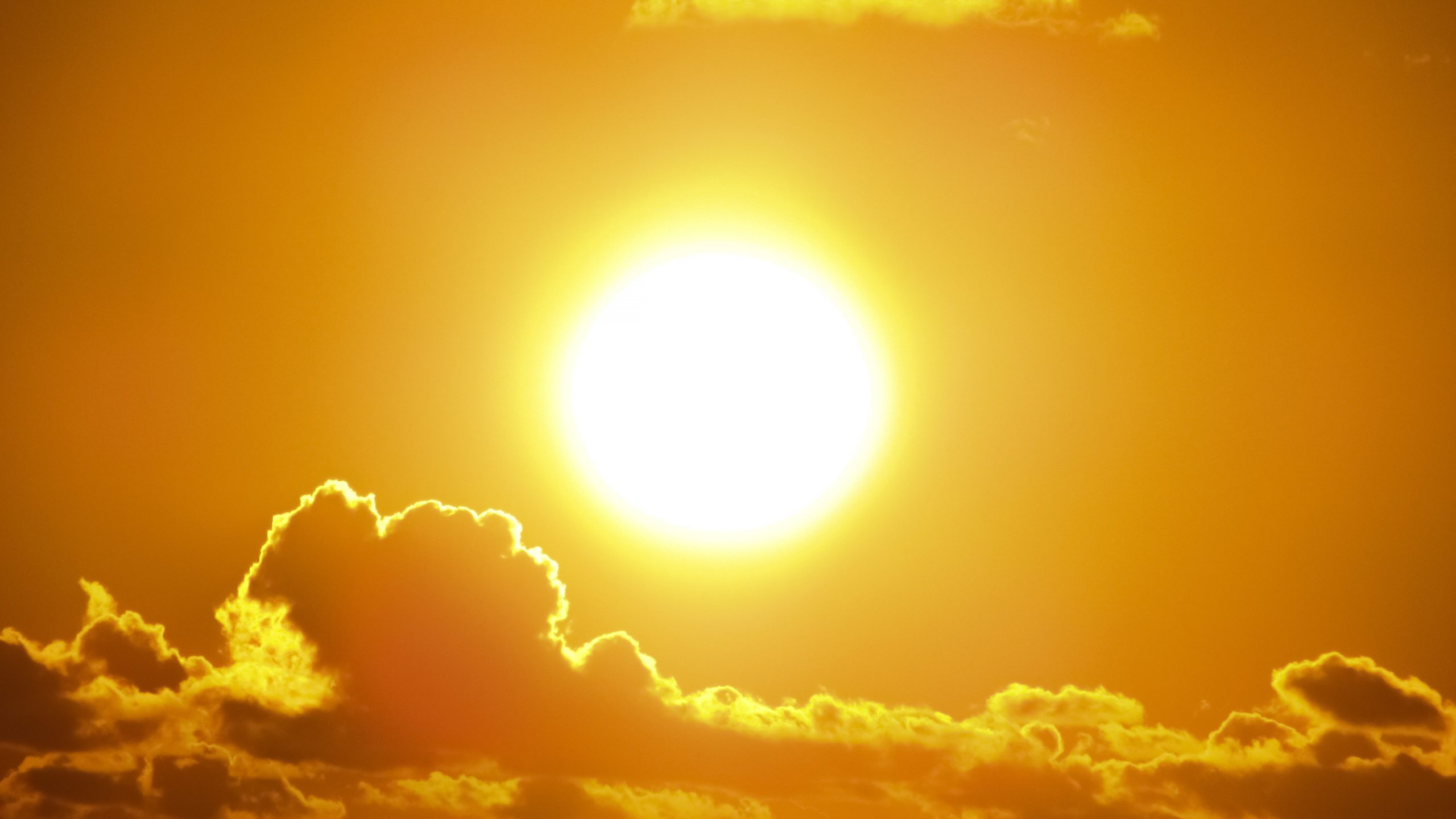 Picture of the sun; nutrients for a healthy immune system.