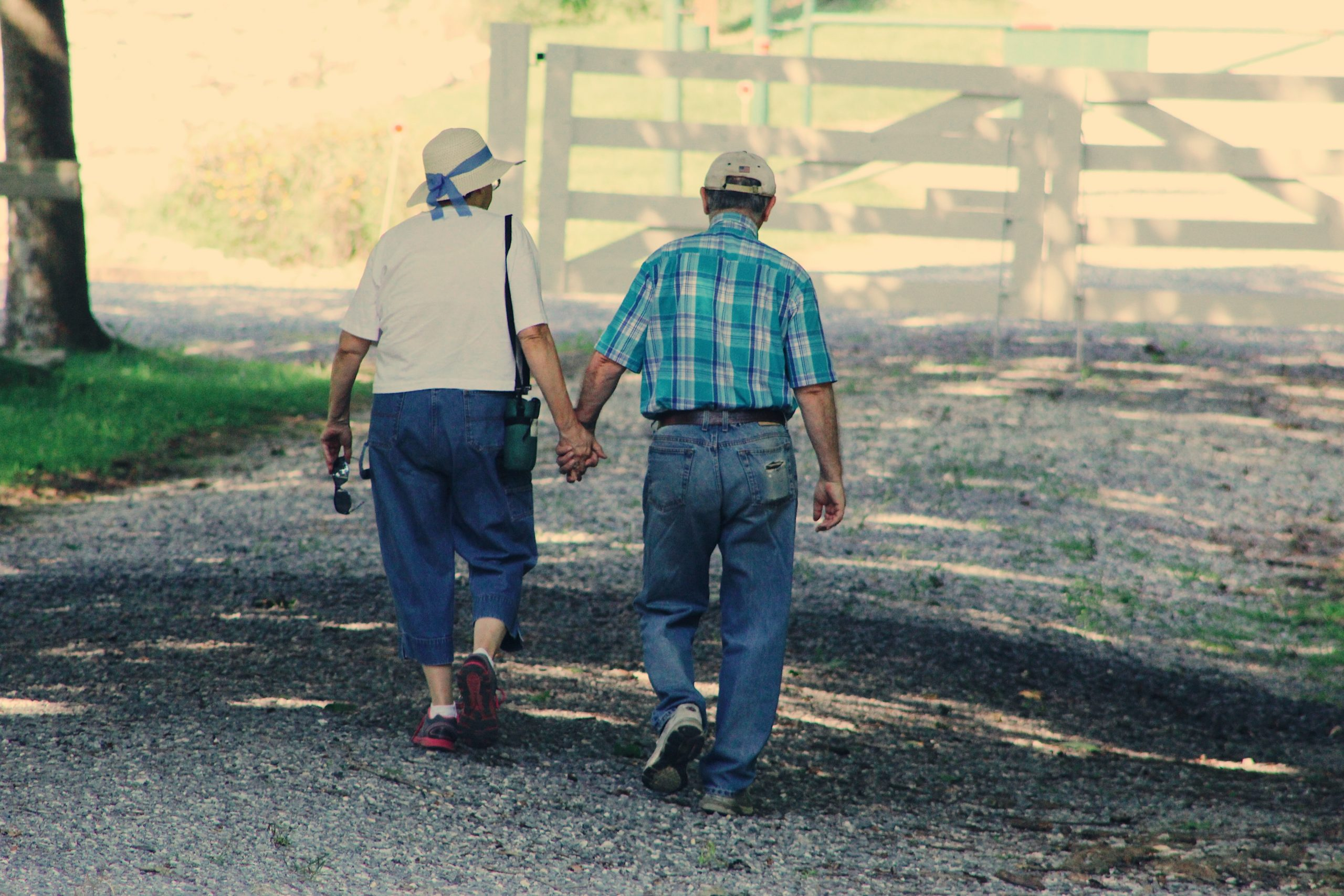 Elderly couple walking; what ot know about Azlheimer's and dementia.